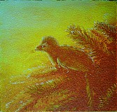 Obrazy - Anchiornis sunset - 825414