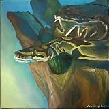 Obrazy - Python regius - 846749