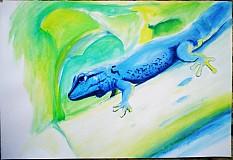Obrazy - Zvieratá - akryl na výkrese A3 (rôzne na výber) - 849024