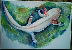 Obrazy - Zvieratá - akryl na výkrese A3 (rôzne na výber) - 849442