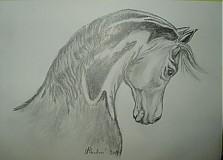 Kresby - kresba ceruzkou - 862678