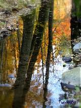 Fotografie - Jeseň v zrkadle - 902038