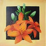 Obrazy - Oranžové ľalie - 964173