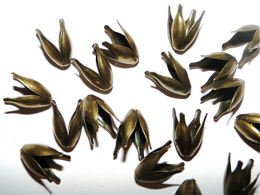 Kaplík tulipán-1ks (starozlatý)