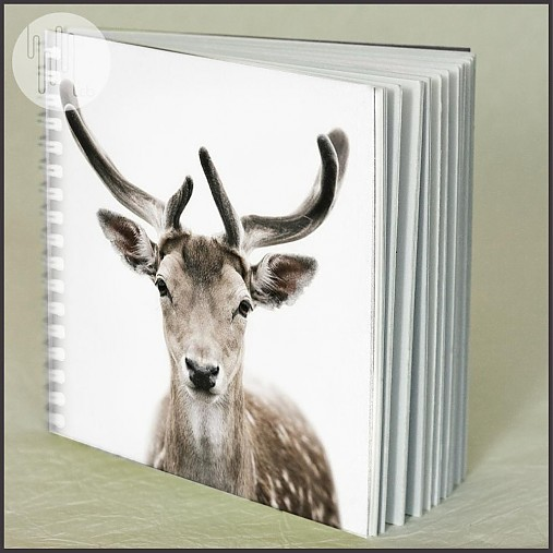 Zápisník JELEŇ