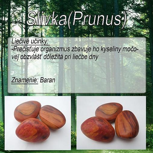 Slivka (Prunus)