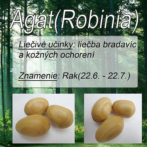 Agát (Robinia)