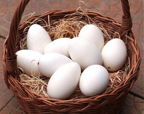 Husí vajíčka ke zdobení
