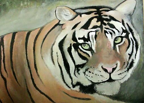 Tiger Tempery Alice Art Sashe Sk Handmade Kresby