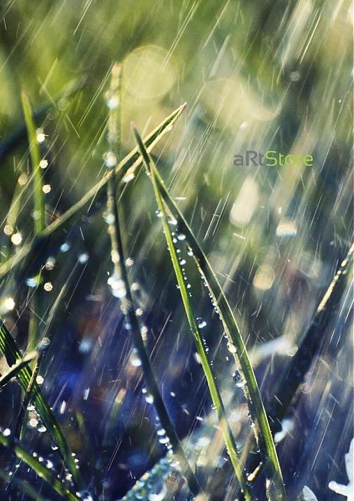 Ranný dážď