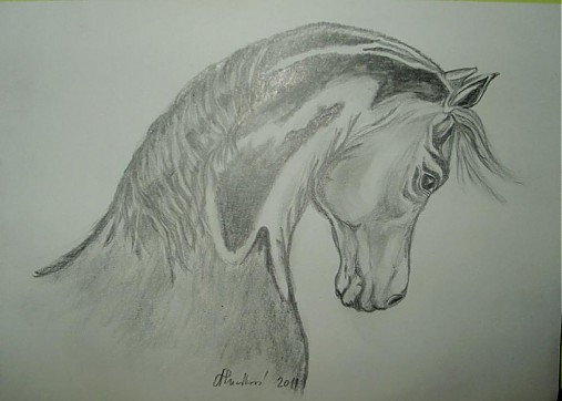 kresba ceruzkou