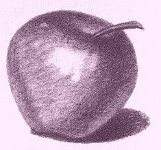 Kurzy - Kresba začiatočníci - 1077821