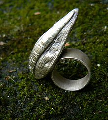 Prstene - ..uvnitř - 128049