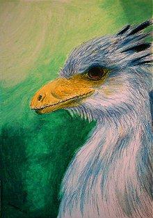 Kresby - Zelený úsvit - 1316835