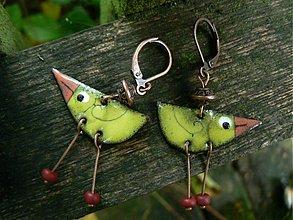Náušnice - ptáčci - 134904