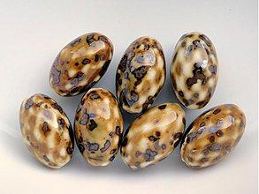 Korálky - Porcel.oliva 15x25mm-1ks - 1528633