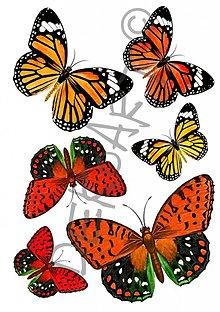 Materiál ručne robený - Nažehľovačky- Motýle2 - 1542697