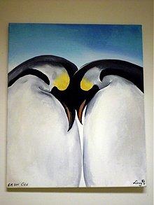 Obrazy - Penguin love - 1615082