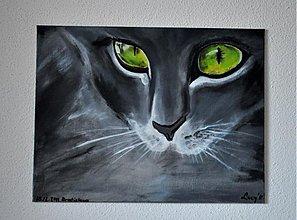 Obrazy - Kitty - 1615088