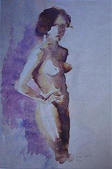 Obrazy - Akt - 163164