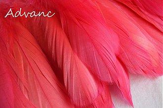 Suroviny - Kačacie rúžové tmavé R6 - 1692278