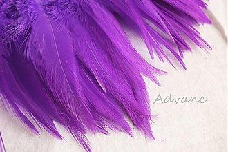 Suroviny - Kohútie jednofarebné fialové R12 - 1807039