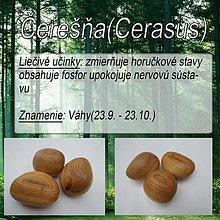 Iné doplnky - Čerešňa (Cerasus) - 1894375
