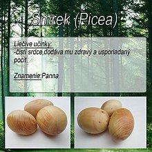 Drobnosti - Smrek (Picea) - 1894428