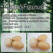 Drobnosti - Jaseň (Fraxinus) - 1894458