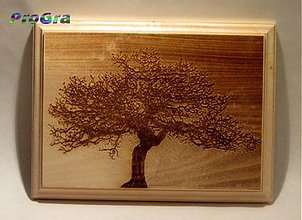 Rámiky - Vaša drevená fotka - rozmer A5 - 2058425