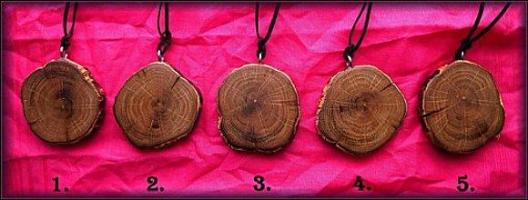 Náhrdelníky - náhrdelníky PRE POTĚŠENIE - DUB - 1.-5. - 2073758