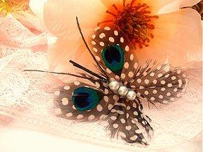 Ozdoby do vlasov - Butterfly Clip/Brooch - 2095302