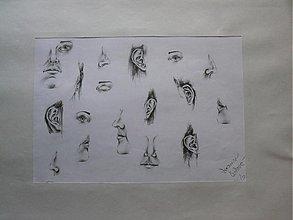 Kresby - Detaily - štúdijné práce A2 - 2100964