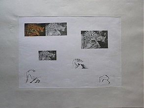 Kresby - Gepart - kresba A2 - 2101049