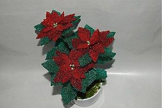 Dekorácie - vianočné ruže - 2138411
