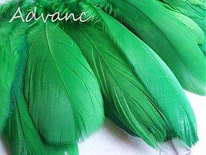 Suroviny - Kačacie zelené R10 - 2163263