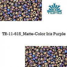 Korálky - 664-T091 TOHO rokajl 11/0 Matte-Color Iris Purple, 10 g - 2174832