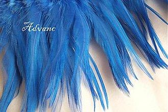 Suroviny - Kohútie jednofarebné modré svetlé R5 - 2190631