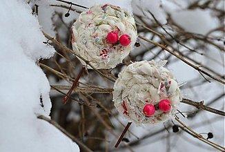 Ozdoby do vlasov - Snežienky - 2267569
