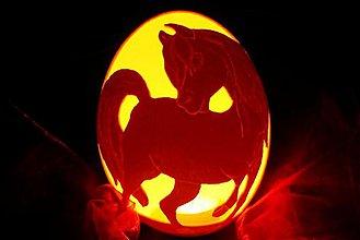 Dekorácie - Koník 2 - pštrosie vajce - 2277178