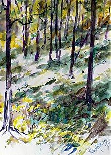 Obrazy - V lese - 2344964