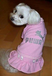 Pre zvieratká - Šatôčky pre psíka  - 2406225