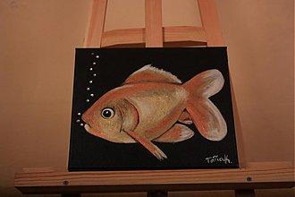 Obrazy - Zlatá rybka - 2625928