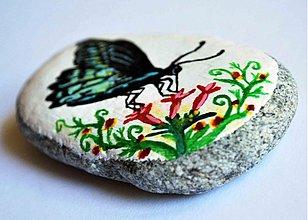 Dekorácie - Motýľ - 2802733