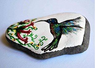 Dekorácie - Kolibrík - 2802740