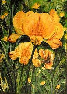 Obrazy - Lúčny kvet - 2804616