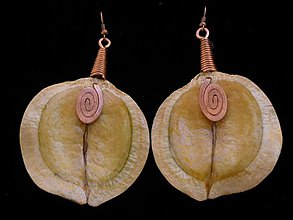 Náušnice - jacaranda subtropical - 283725