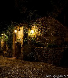 Fotografie - Dalmatian night - 3069433