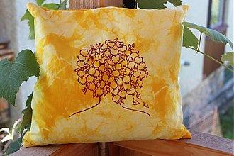 Úžitkový textil - pohánkový vankúšik - 3073834