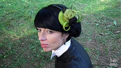 Ozdoby do vlasov - Robin H. - 3102952